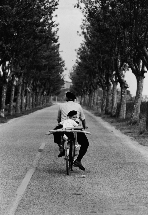 inritus:  Provence, France, 1955. Photographed by Elliott Erwitt.