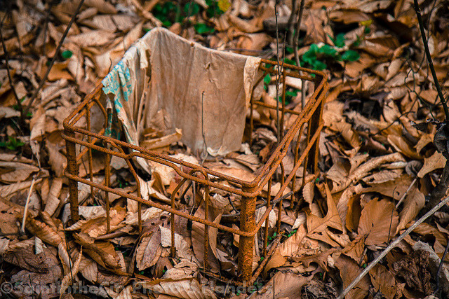 Covered up in Rust on Flickr.Via Flickr: Pennypack Park, PA. Check out my shop:www.etsy.com/shop/CitySaint Like me on facebook.www.facebook.com/citysaintphoto