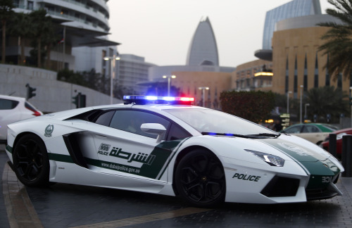 5copy:  exclusive-pleasure:  Only in Dubai!!  I thought lamborghini police cars ony existed in NFS