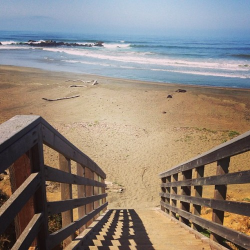 Moonstone beach ladies & gentlemen 🐬 #moonstonebeach #sand #ocean #beach #california