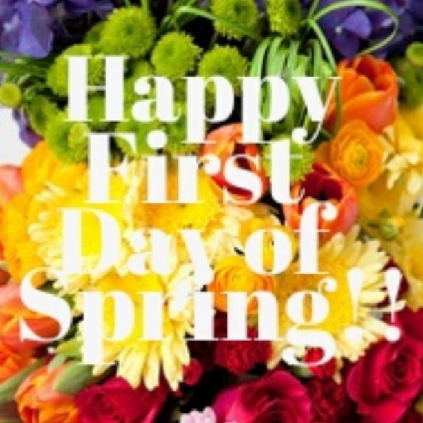 *** Happy First Day of Spring Unicorns!! *** #Spring #springtime #limecrime #rainbow #color #happy #alwaysbeaunicorn