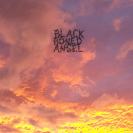 Black Boned Angel // The End (2013)