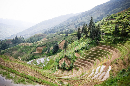 terraces by marin.tomic on Flickr.