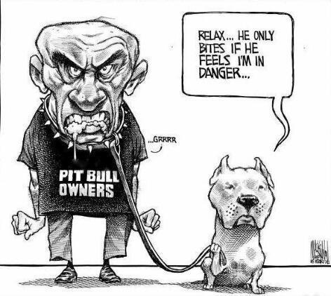 tamzeh-fahq:   True.. some owners are have a bigger bite then the pit bull.