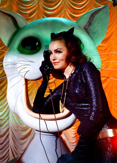 Julie Newmar as Catwoman on the Batman TV series, 1960s