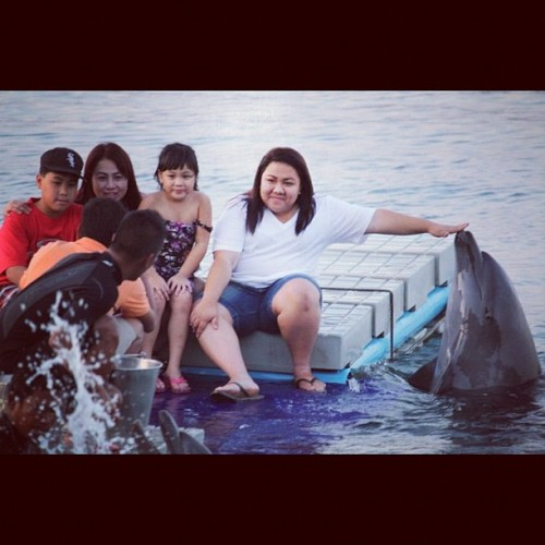 fat fat fat  #throwbackthursday #oceanpark #dolphin