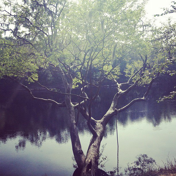 Never too old for a rope swing.