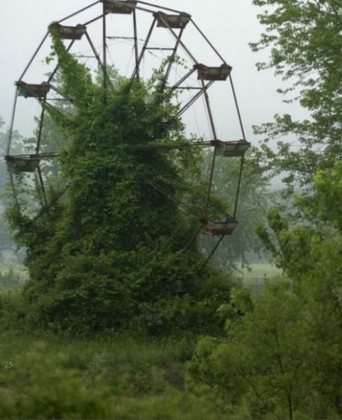 neil-gaiman:  jupiterstarr:   Abandoned Amusement Park in New Orleans  they say New orleans is haunted… this has proved the theory 100%  I was sending photos like this to everyone when I started writing Nightmare in Silver. There is something uniquely disturbing about abandoned Amusement Parks.