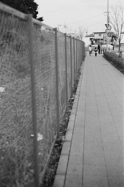 フェンス (The fence) on Flickr.
