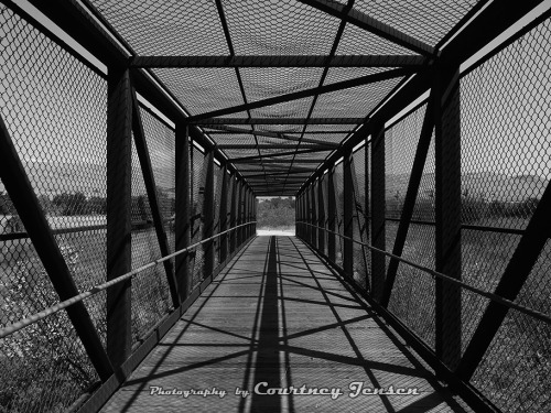 Coyote Creek Trail Bridge Santa Clara County, California 2011