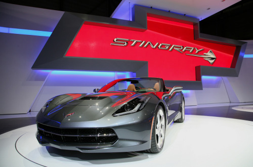 A day at the aquarium Starring: '14 Chevrolet Corvette Stingray Convertible (by Alex Nunez)