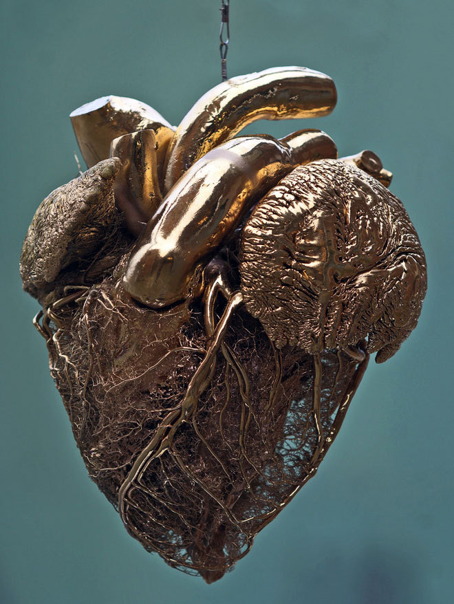 the-science-llama:  The blood vessels of a Bull's heart, covered in fake gold.— Dr. van Hagen's Plastinarium