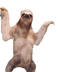 Transparent Sloth for your blog!