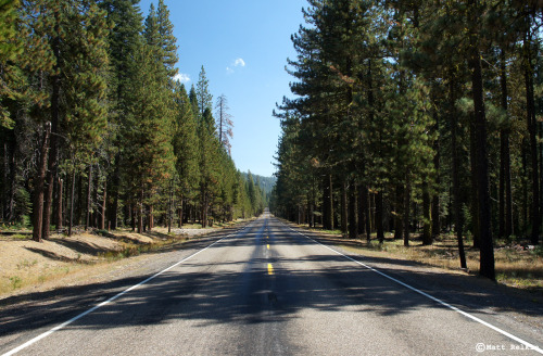Hwy 89, Lassen National Forest, California