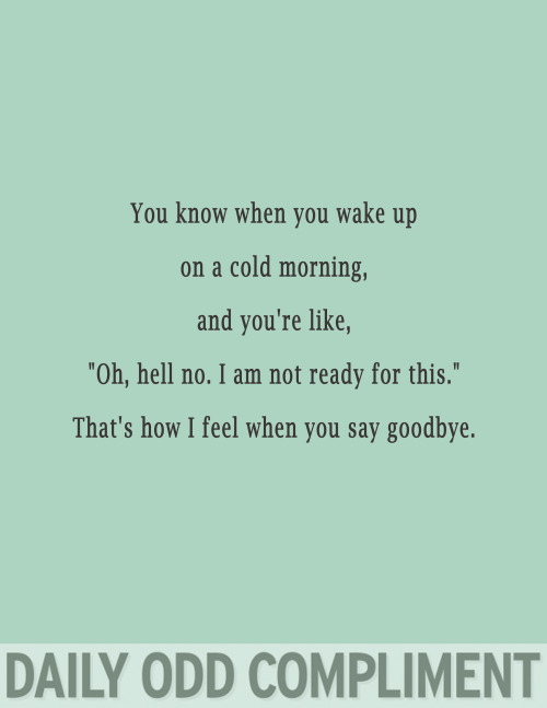 "dailyoddcompliment:  ""Cold Morning"""