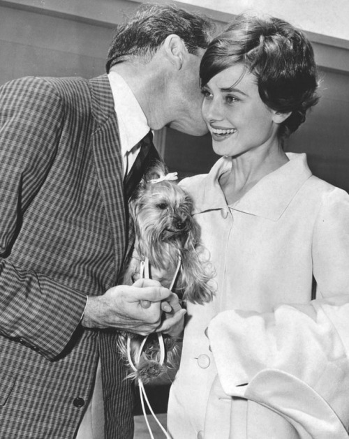 Audrey Hepburn and husband Mel Ferrer with their yorkshire terrier Mr. Famous, 1958.