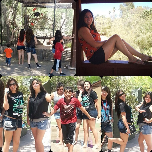 Had a great day at the zoo (: