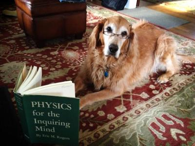 physicsphysics:  Couldn't resist reblogging this inquisitive little dog. Though, while we're on the topic, there is a book and website about teaching your dog physics — which is pretty cool.