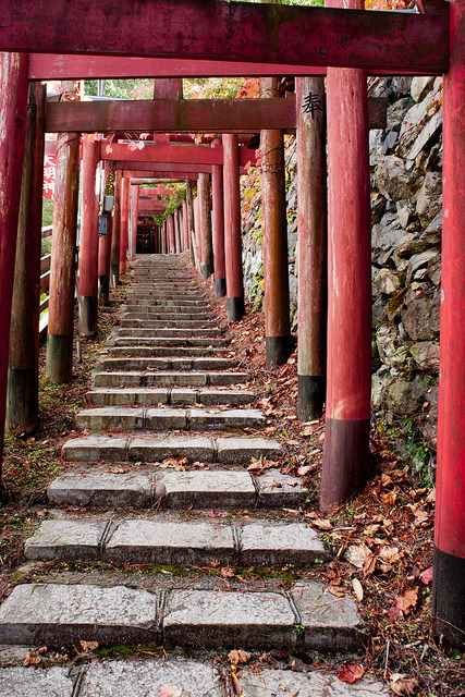 japanesse-life:  20111026_212 Kiyotaka-Inari, Mount Koya | 高野山 清高稲荷 by peter-rabbit on Flickr.