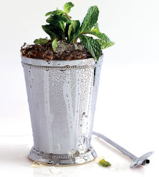 bookofbourbon:  Prescription Julep    10 mint leaves 1 tablespoon Simple Syrup  3 tablespoons VSOP Cognac 2 tablespoons rye whiskey 4 mint sprigs    Preparation   Lightly muddle mint leaves and Simple Syrup in a mixing glass. Stir in Cognac and whiskey. Fill a Julep cup or glass with crushed ice. Pour mixture over. Stir until frost forms on outside of cup. Add more crushed ice to make a mound. Garnish with mint sprigs and serve with a straw.