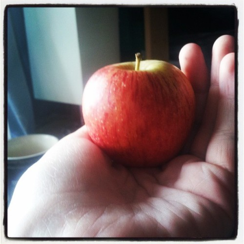 Cute little apple.