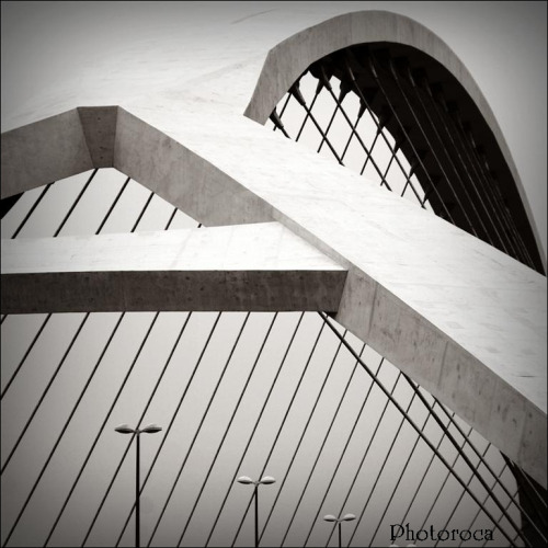 Zaha Hadid Bridge Detail by Photoroca http://flic.kr/p/dUm2Fm