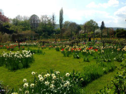 Monet's Home at Giverny and its beautiful dreamy gardens…Check out the rest of the photos from here; http://www.ekavart.tv/Yazi/monetnin-givernydeki-muhtesem-muze-evi-yazanleyla-unsal