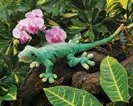 Folkmanis Gecko Puppet for only $9.25