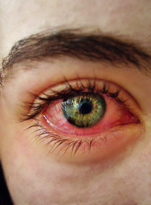 luisachavez02:  Weed on We Heart It - http://weheartit.com/entry/56752534/via/Luisaachavez