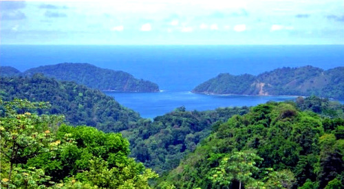 New listing: Housesitter/Petsitter needed on the Nicoya Peninsula, Costa Rica. Details: The Caretaker Gazette's latest email broadcast. www.caretaker.org