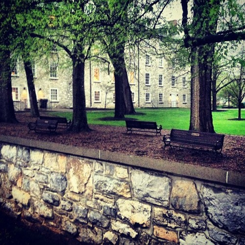 Campus is actually quite nice in the rain. #dsonphotos
