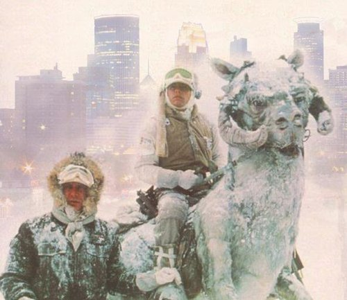 #Minnesnowta I told you we needed Tauntauns.