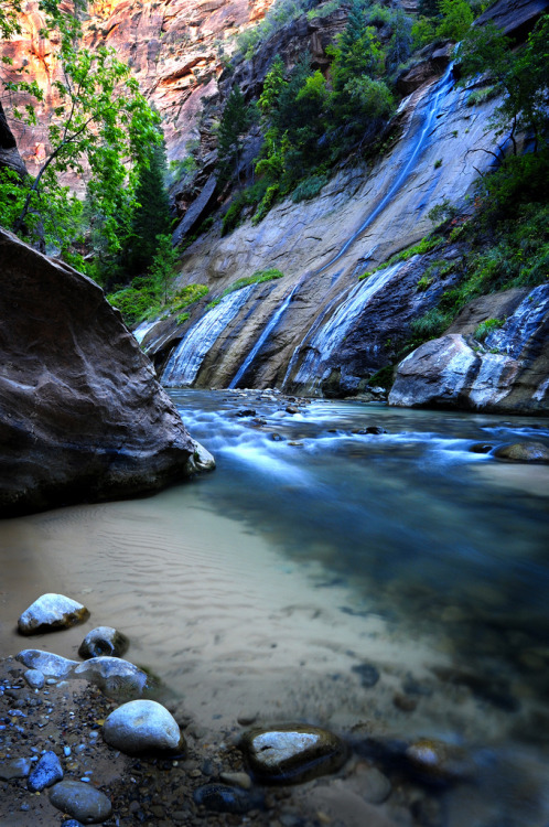 aesthecia:  Zion Narrows Falls (by David Dahlenburg)