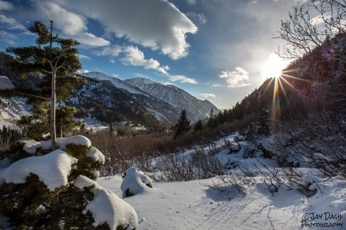 littlelizapoliza:  Sunset in little cottonwood