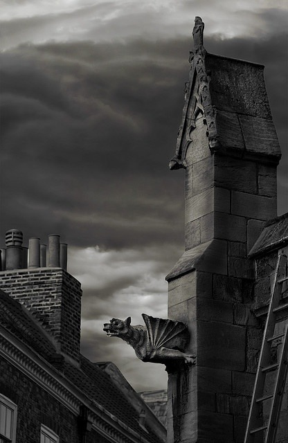 Flying Gargoyle, York, England photo via gena