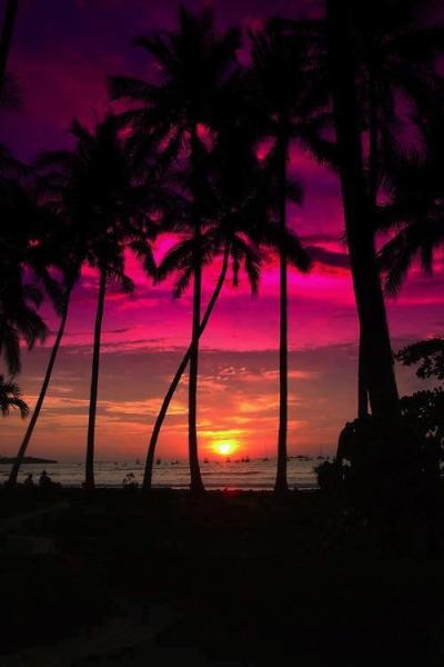 brutalgeneration:  Pacific Sunset, Costa Rica