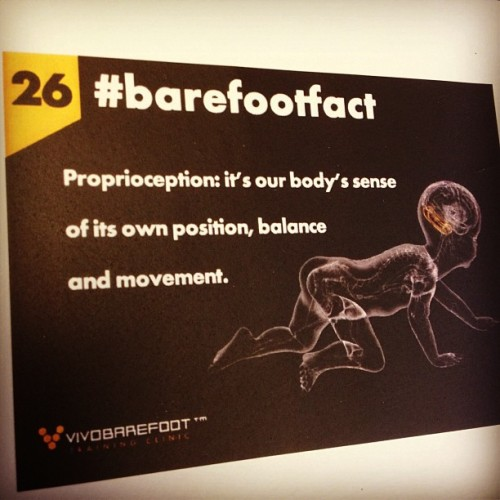It makes sense!   #barefootfact 26 Proprioception: it's our body's sense of its own position, balance and movement. http://www.vivobarefoot.com/barefoot-facts
