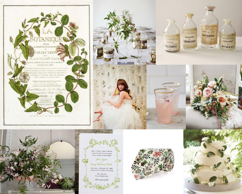 Mood: vintage garden romancePalette: vine green, parchment paper, pink jasmine Row 1: La Botanique by Regnault via Michaele's Pinterest / simple jasmine centerpiece by Ariel Dearie for Sunday Suppers / vintage French pharmacy bottles from The Hope Tree // Row 2: dress from Ivy & Aster / rhubarb and rosewater cocktails from 101 Cookbooks / bouquet with jasmine and roses from Martha Stewart Weddings // Row 3: jasmine centerpiece by Saipua / spring garden letterpress invitation by Austin Press / Liberty of London necktie / cake with stephanotis vine from Martha Stewart Weddings (via Board #578 | Vintage Botanical Jasmine Vine | Snippet & Ink)