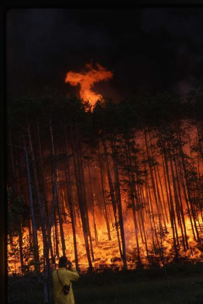"""Forest fire rages in Siberia. (Credit: UA Laboratory of Tree-Ring Research)""—via UANews"