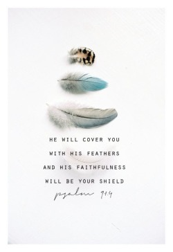 spiritualinspiration:  As a believer in Jesus, you have certain privileges because you belong to Christ. When you chose Him, God put a blood line around you that the enemy cannot cross. As long as you're keeping Him first place, you have a hedge of protection, a hedge of favor, a hedge of mercy surrounding you like a shield. When difficulties come, God says that because you're His child, because you honor Him, even though that problem has formed, in the end it is not going to prosper. When it's all said and done, it's not going to harm you. God is going to turn it around and use it to your advantage. That's your heritage as a believer!