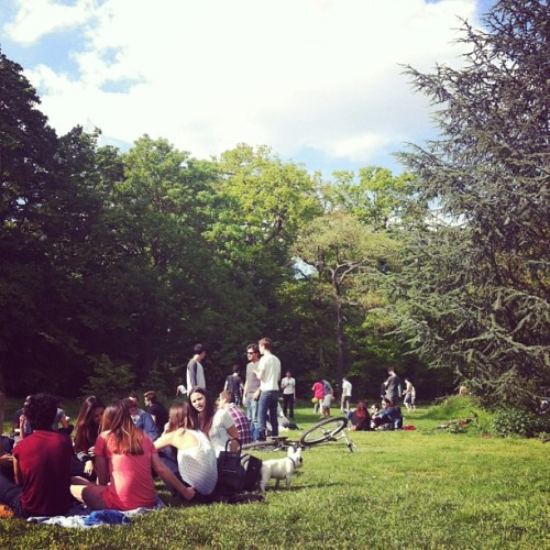 …electronic picnic in a forest , and 5000 other reasons why I love Paris (à Bois de Boulogne)