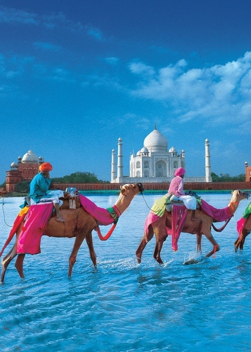 keepcalmandtraveltheworld:  Taj Mahal, Agra; India