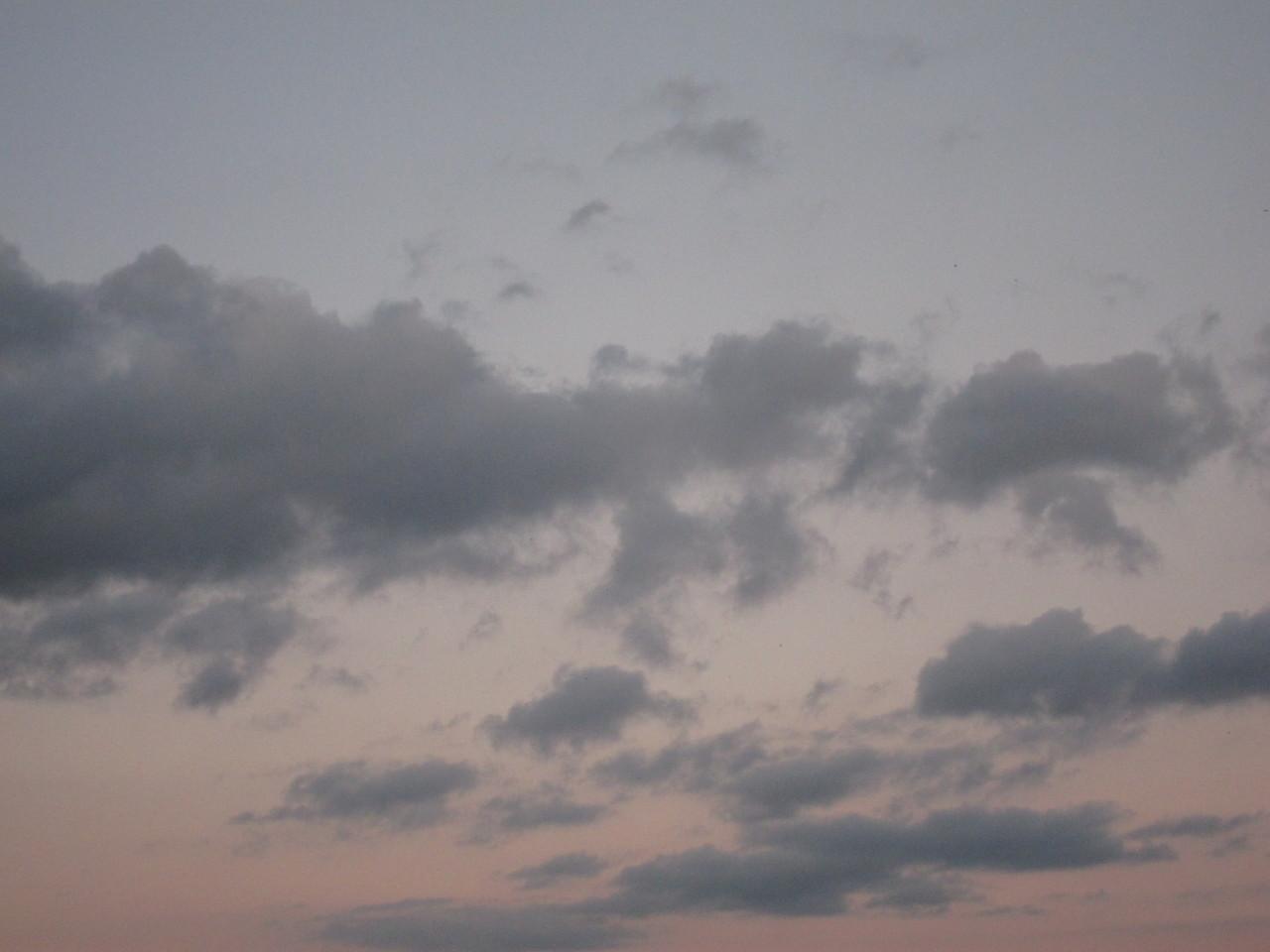 feel free to reblog © Soeren Baptism @soerenbaptism (instagram) www soerenbaptism com for more #soerenbaptism#goblincore#goblin things#goblin community#goblincore culture#goblin#naturecore#cozycore#honeycore#warmcore#meadowcore#farmcore#cottagecore#cabincore#corvidcore#countrycore#softcore#cozy#grandmacore#gardencore