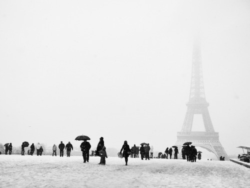 black-and-white:  La tour eiffel sous la neige (by . ADRIEN .)