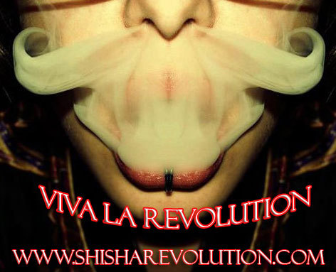Viva La Revolution.  Check out the Shisha Revolution Today. Shisha Revolution