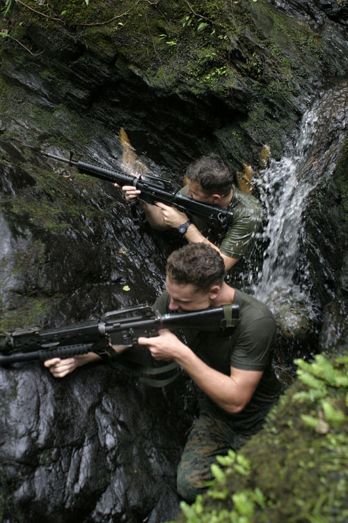 """45-9mm-5-56mm:  ofspacifica:  050829-M-1837P-002 JUNGLE WARFARE TRAINING CENTER, OKINAWA, Japan - Sergeant Jason B. Finch and Cpl. Brian T. Britton provide cover while a visual tracker scouts for signs left behind by their objective in the Northern Okinawan jungle during the Military Tracking Course Aug. 29. They are part of a three-man tracking team chasing a three-man """"rabbit"""" team. Finch is a chief scout sniper and Britton is a scout sniper, both with 2nd Battalion, 4th Marine Regiment, Battalion Landing Team, 31st Marine Expeditionary Unit. (Official U.S. Marine Corps photo by Pfc. C. Warren Peace)(released)  (via TumbleOn)"""