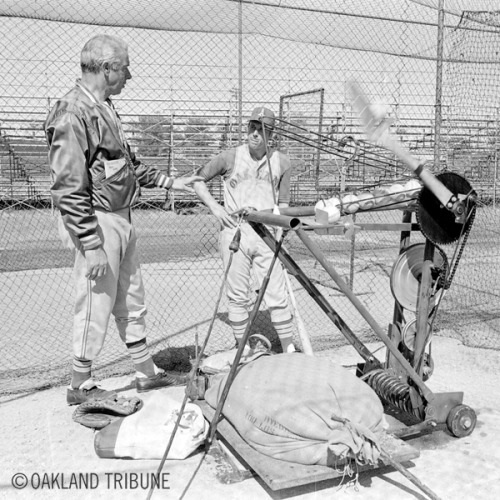 oaklandtribunearchives:   A'S SPRING TRAINING Mesa, Arizona March 6, 1969 - In another previously unseen photo, Joe DiMaggio works with Athletics catcher Dave Duncan.  (Photo by Howard Erker / Oakland Tribune Staff Archives)