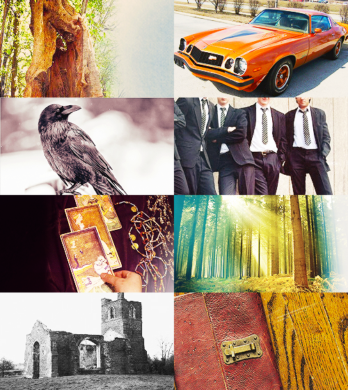 "jaceherndales:  YA LITERATURE MEME series or books [3/10] » the raven cycle  ""It was a brave thing to say, or an arrogant one, or maybe there was not enough difference between the two things to matter."""