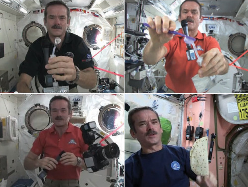 "The astronaut from next door: Canadian Chris Hadfield is quickly becoming the biggest name in space travel. via nationalpost:  Bread is a bad idea in space. Bread makes for crumbs and crumbs make for a mess in zero gravity, floating this way and that, and so a Canadian astronaut hankering for a peanut butter and honey sandwich will leave the Wonder behind for us earthbound slobs and reach instead for a fresh vacuum-sealed flour tortilla.""A tortilla can be good for 18 months,"" Chris Hadfield explains in a scene from ""Chris Hadfield's Space Kitchen,"" the latest video from our man among the stars detailing everyday life aboard the International Space Station.The 53-year-old makes peanut butter and honey sandwiches. In other dispatches, he has brushed his teeth, demonstrated how to clean up a water spill, bubble by bubble, by plucking the distended orbs from mid-air, jammed with Ed Robertson of the Barenaked Ladies, put on a goofy outfit to celebrate Mardi Gras, swapped tweets with William (Captain Kirk) Shatner, dropped a puck from the heavens on Hockey Night in Canada, fixed some space station gizmo of great scientific importance while sending out a daily stream of majestic photographs of the Earth below — the Sahara, the Australian Outback, the blinding lights of Beijing — via Twitter, Facebook, Youtube and Tumblr."