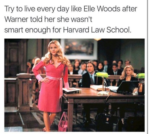 Legally Blonde- The Musical